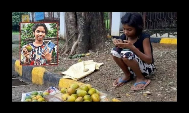 11-year-old Tulsi Kumari Sells Mangoes Worth Rs 1.2 Lakh, Gets Smartphone to Get Online Education