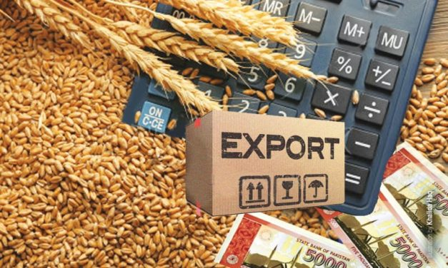 USDA Increases Estimated Forecast of Wheat Export to 1.8 Million Tonnes