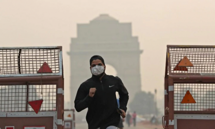 8 Methods Adopted by Delhi to Fight Pollution Problem