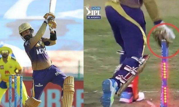 Dinesh Karthik Breaches IPL Code of Conduct, Frustration Leaves Stump Rattled