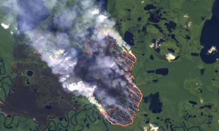 Amazon Forest is Burning since 3 Weeks & the smoke can be seen from space.