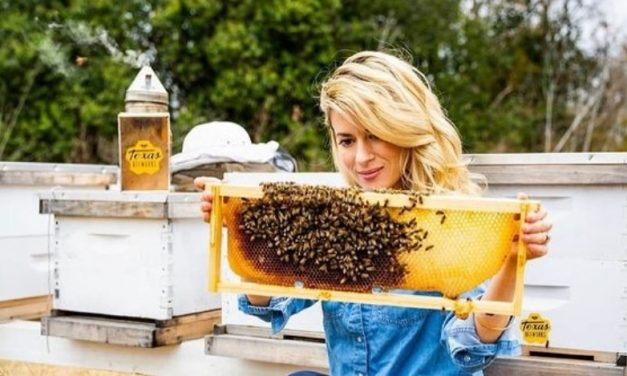 Woman's careful way of removing Bee Colony, amuses people, video trends on Social Media