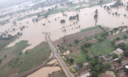 MP Floods: Over 1200 Villages Affected, 1,600 People Rescued; Army and Air Force in Action