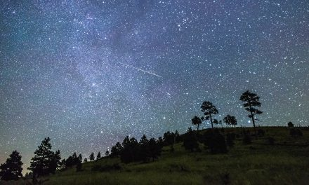 Perseids Meteor Shower – Here's How You Can See Up to 50 Shooting Stars in Coming Weeks