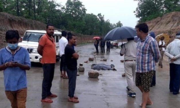Tiger Hit-and-Run: Tiger cub run over by Vehicle On NH-43 in Madhya Pradesh