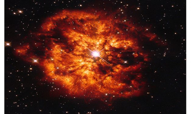 WR star: Indian astronomers trace rare Supernova Explosion with foreign scientist