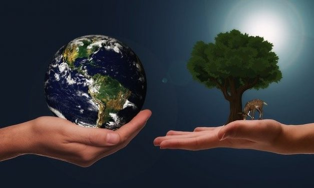 World Environment Day: 5 Ridiculously Easy Things You Can Do to Save Environment Starting Today