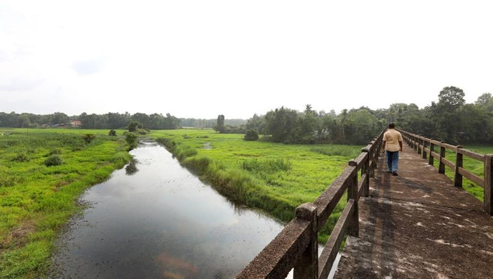 Villagers revive the dying river by planting 1.25 lakh trees.