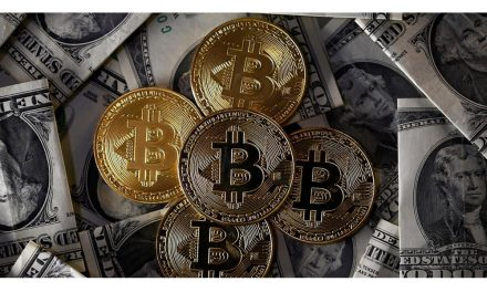 Cryptocurrency Exchange in India Froze 4 Accounts as Interest in Crypto Increases