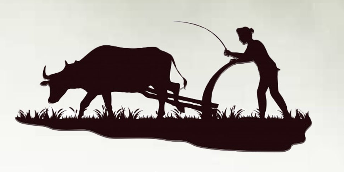 Social media flooded with tweets on #KisanDiwas to express gratitude towards farmer, Trending on twitter